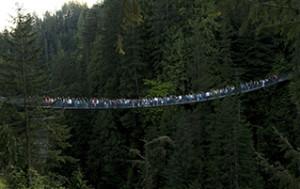 Capilano Suspension Bridge Park Join Our Team Thumbnail